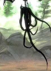 Dunkel-Elementar (Elite)